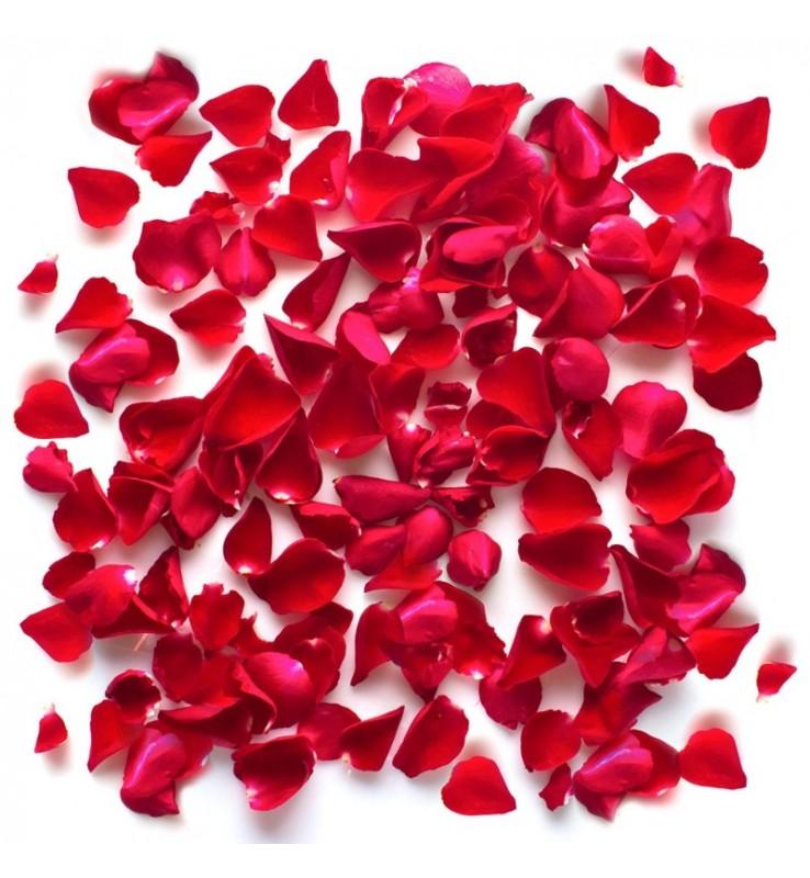 Fleuriste Leloup-Pétales de roses
